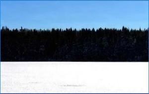 Eesti lipu värvid