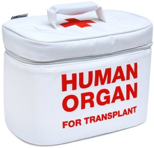 organ_transplant_lunchbox_1