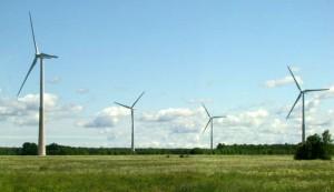 2009-06-16 - Aulepa tuulepargi avamine (209)