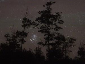 Pleiades-seven-sisters-Bob-KingS-1024x769