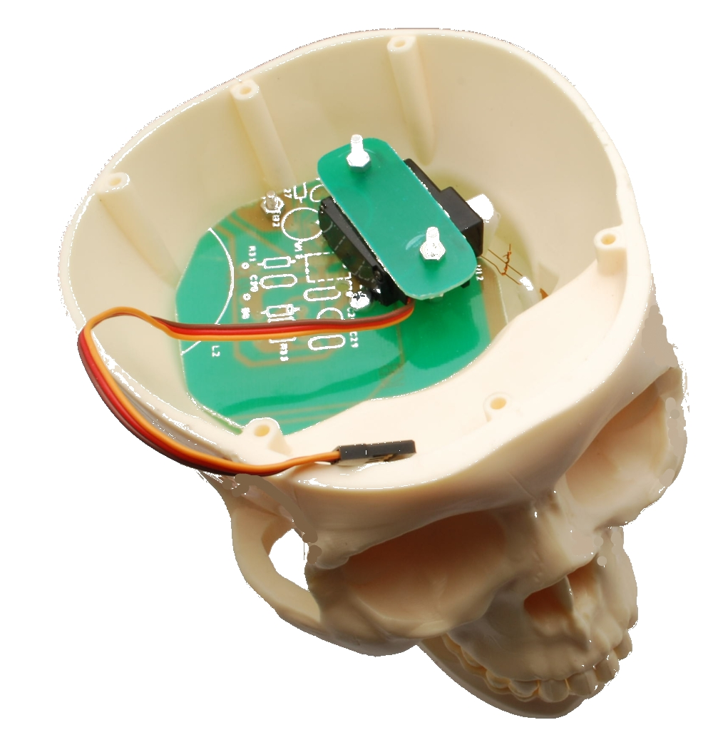 skull-open1