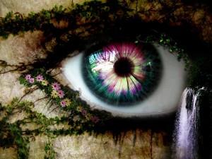flower_eye_1600x1200