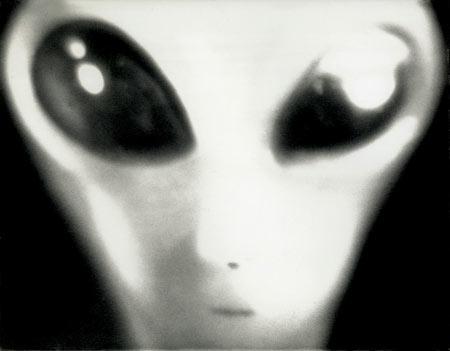 portrait-of-grey-alien-copy-envision-stock-photographymak