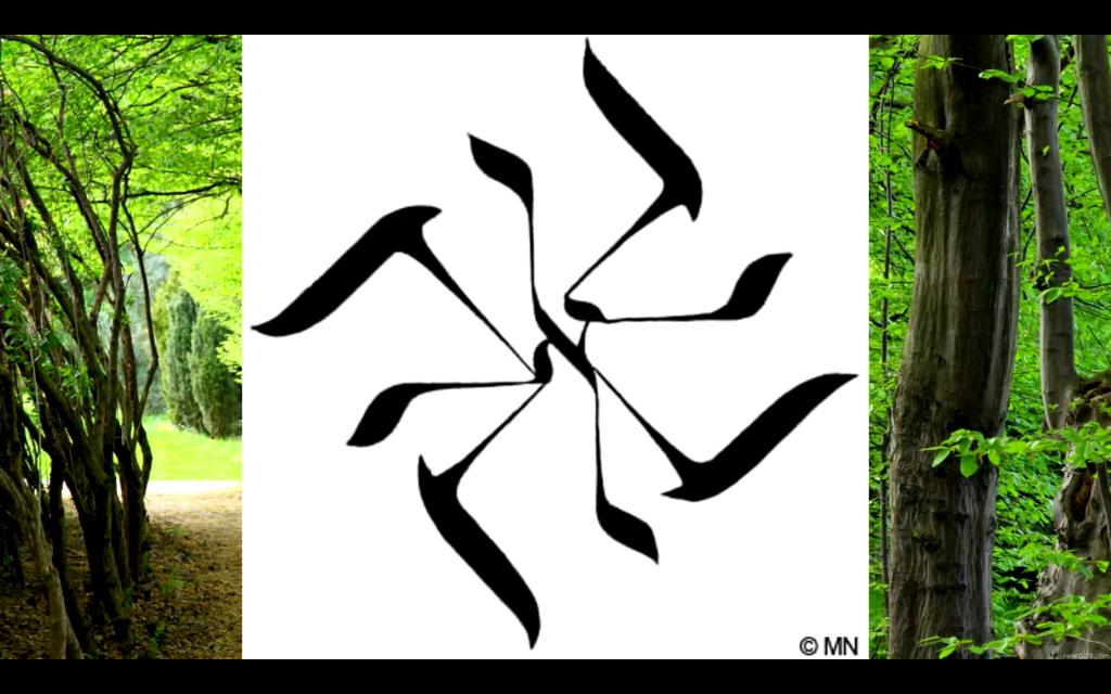 atonswastika2