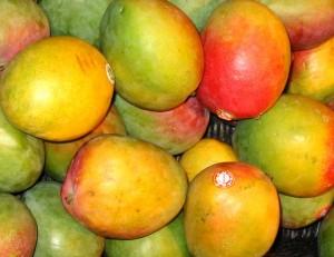 mangod