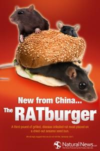 rotiburger1