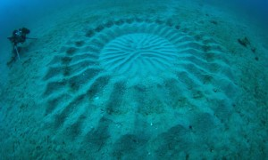 underwater-mystery-circle-2