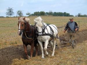 Farmer_plowing_in_Fahrenwalde,_Mecklenburg-Vorpommern,_Germany