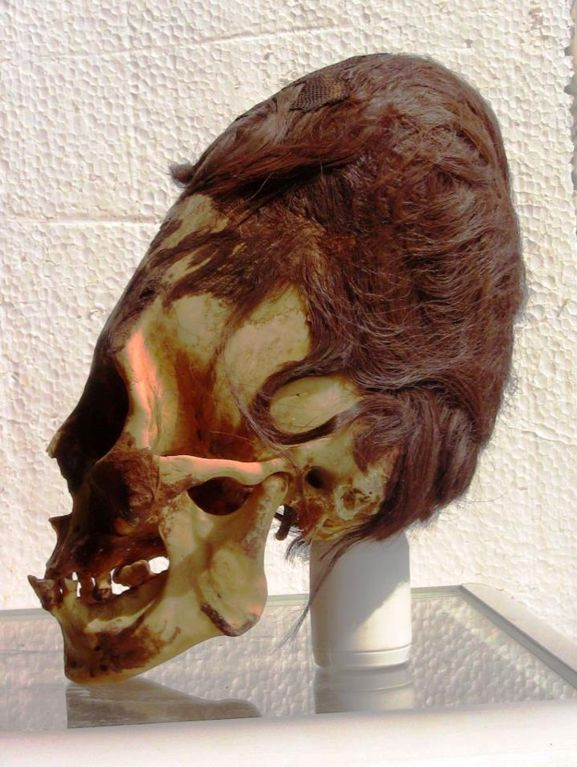 SkullParacas