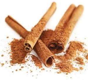 cinnamon-whiteback-2