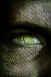 reptilian_by_sapphireeyedstranger