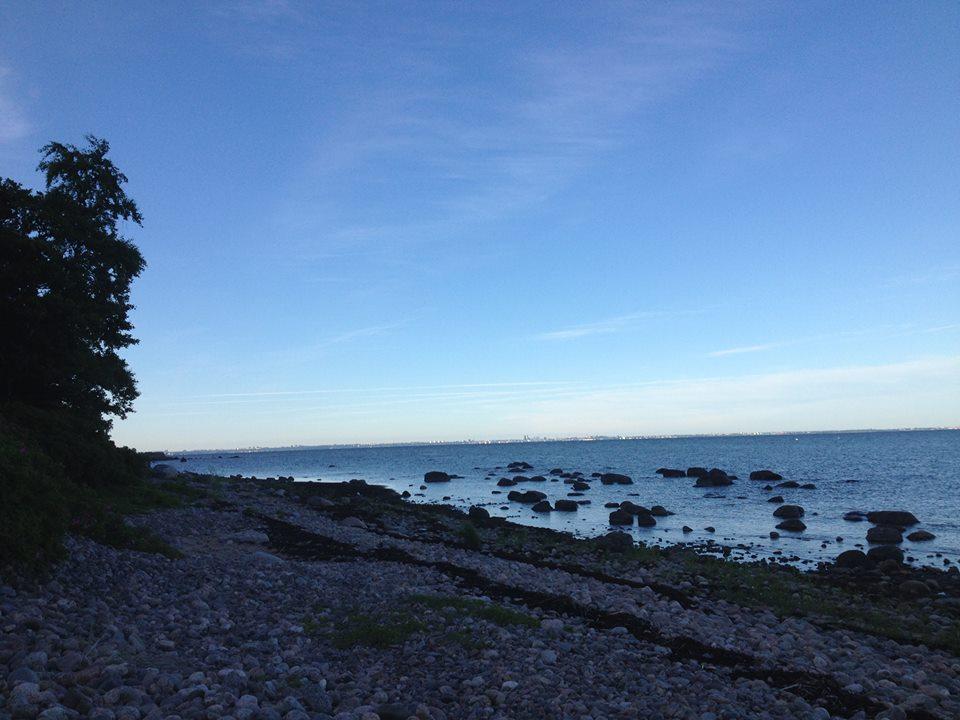 Aegna saarelt vaade mandrile  (juuni 2013)