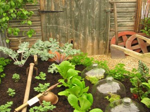 Traditional-vegetable-garden-picture