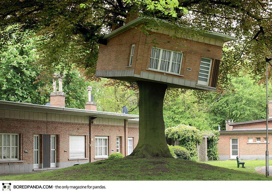 amazing-treehouses-9