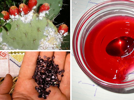 How To Make Red Food Coloring At Home