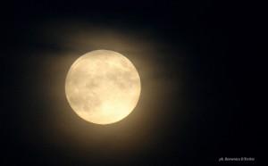 moon_harvest_9-30-2012_Domenico_D_Erchia_Italy