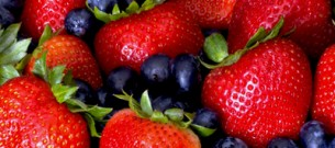 berries_lead