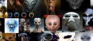 AlienRaces3