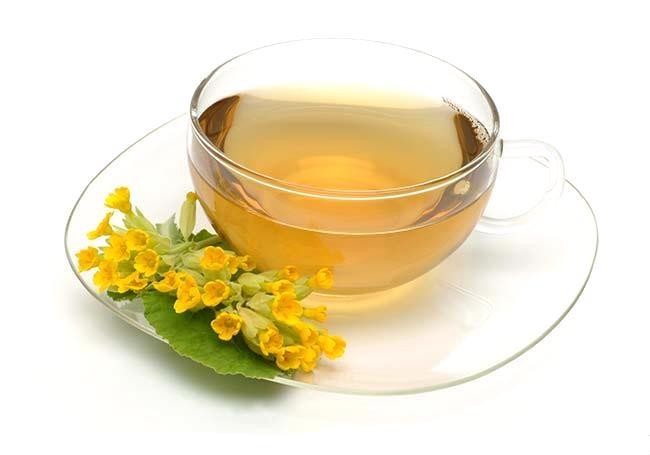Medicinal plant, cowslip, tea, medicinal tea. Pianta medicinale, erbe officinali, Primula odorosa, te.