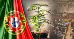 Legal-Status-of-Cannabis-in-Portugal-1