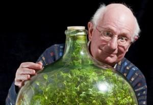Planta-na-garrafa-de-David-Latimer
