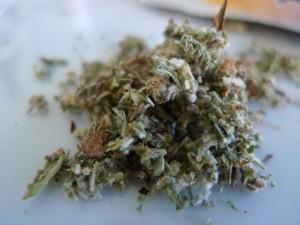 synthetic-marijuana