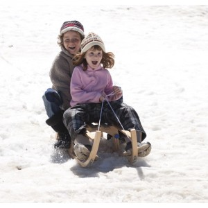 foldable-wooden-sledge_61366_3