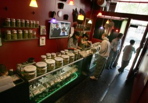 new-business-marijuana