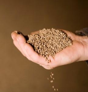 phosphate fertilizer - cropped