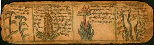 tibetan text