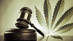 Cannabis_Leaf_And_Mallet