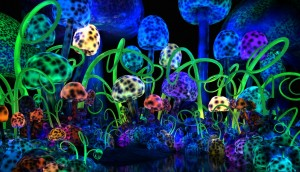 magical_mushrooms_by_darkgeometryart-d3b274v