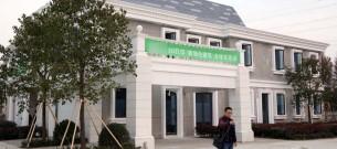 china-3d-printed-mansion-and-tower-block-photo-1