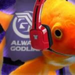 Fish_Street_Fighter_sponsor-1200-80