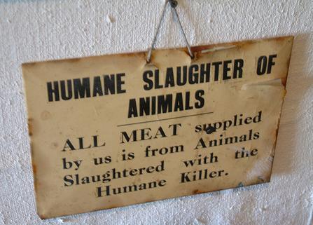 humane-slaughter