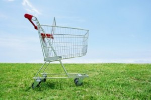 eco_shopping_cart_on_lawn