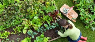 woman-work-in-garden