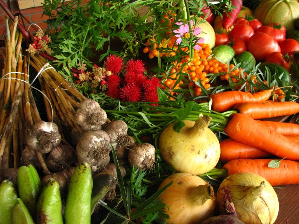 Mais avasid uksed esimene taimetoidu kauplus ja pakendivaba pood Eestis | Telegram