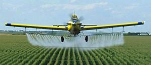 field-spray-corn-cropduster-crop
