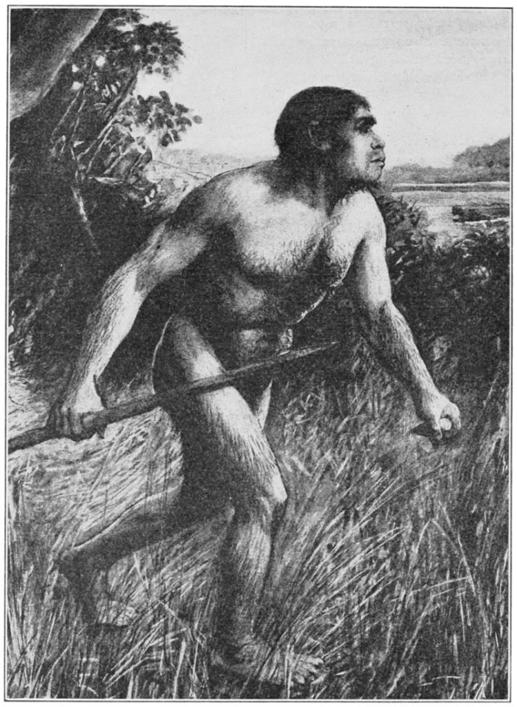 Piltodown inimese rekonstruktsioon (1913)