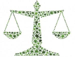 cannabis-confusion-845x643