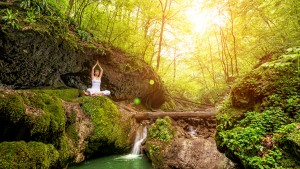 meditation-woods