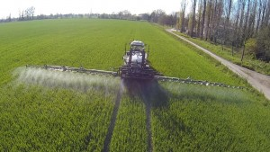 wheat-spraying
