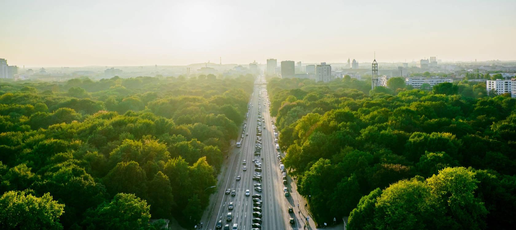 Maailma muutvad ideed: Puud peaksid olema osa linnade tervishoiu infrastruktuurist